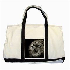 Feline Lion Tawny African Zoo Two Tone Tote Bag