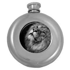 Feline Lion Tawny African Zoo Round Hip Flask (5 Oz)