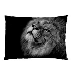 Feline Lion Tawny African Zoo Pillow Case