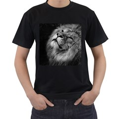 Feline Lion Tawny African Zoo Men s T Shirt (black)