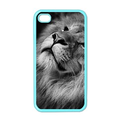 Feline Lion Tawny African Zoo Apple Iphone 4 Case (color)