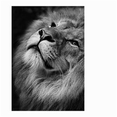 Feline Lion Tawny African Zoo Small Garden Flag (two Sides)