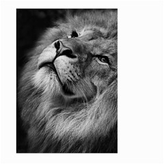 Feline Lion Tawny African Zoo Large Garden Flag (two Sides)