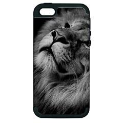 Feline Lion Tawny African Zoo Apple Iphone 5 Hardshell Case (pc+silicone)