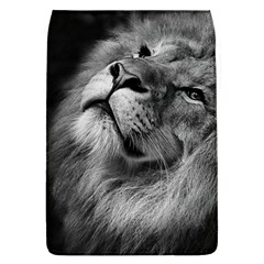 Feline Lion Tawny African Zoo Flap Covers (l)