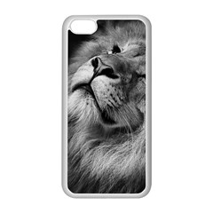 Feline Lion Tawny African Zoo Apple Iphone 5c Seamless Case (white)