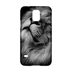 Feline Lion Tawny African Zoo Samsung Galaxy S5 Hardshell Case