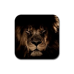 African Lion Mane Close Eyes Rubber Coaster (square)