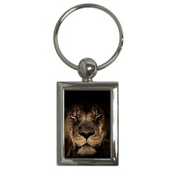 African Lion Mane Close Eyes Key Chains (rectangle)
