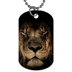 African Lion Mane Close Eyes Dog Tag (one Side)