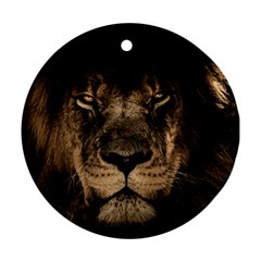African Lion Mane Close Eyes Round Ornament (two Sides)