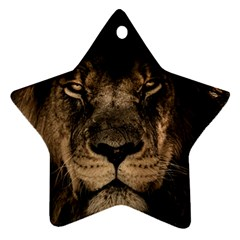 African Lion Mane Close Eyes Star Ornament (two Sides)