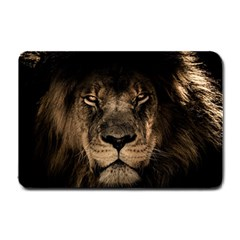 African Lion Mane Close Eyes Small Doormat