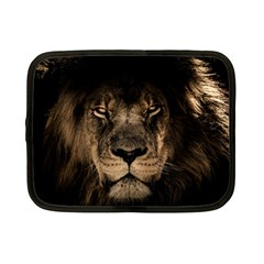 African Lion Mane Close Eyes Netbook Case (small)