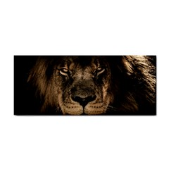 African Lion Mane Close Eyes Cosmetic Storage Cases