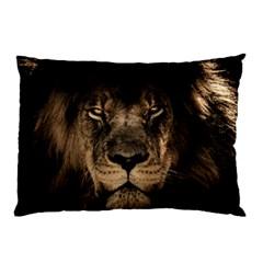African Lion Mane Close Eyes Pillow Case