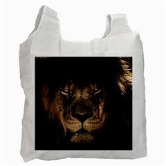 African Lion Mane Close Eyes Recycle Bag (two Side)