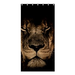 African Lion Mane Close Eyes Shower Curtain 36  X 72  (stall)