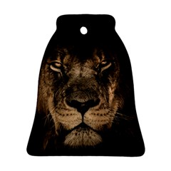 African Lion Mane Close Eyes Ornament (bell)