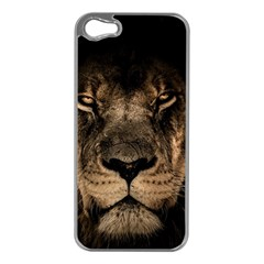 African Lion Mane Close Eyes Apple Iphone 5 Case (silver)