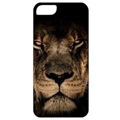African Lion Mane Close Eyes Apple Iphone 5 Classic Hardshell Case