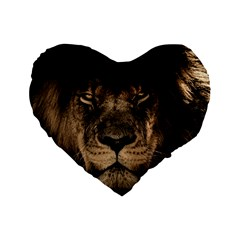 African Lion Mane Close Eyes Standard 16  Premium Heart Shape Cushions