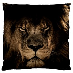 African Lion Mane Close Eyes Large Flano Cushion Case (one Side)