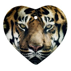 Tiger Bengal Stripes Eyes Close Ornament (heart)