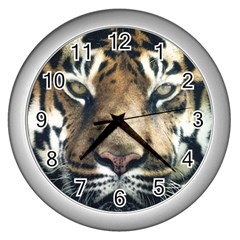 Tiger Bengal Stripes Eyes Close Wall Clocks (silver)