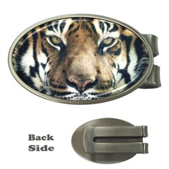 Tiger Bengal Stripes Eyes Close Money Clips (oval)