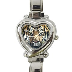 Tiger Bengal Stripes Eyes Close Heart Italian Charm Watch