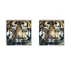 Tiger Bengal Stripes Eyes Close Cufflinks (square)