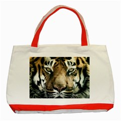 Tiger Bengal Stripes Eyes Close Classic Tote Bag (red)
