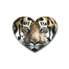 Tiger Bengal Stripes Eyes Close Rubber Coaster (heart)