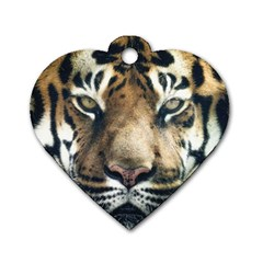 Tiger Bengal Stripes Eyes Close Dog Tag Heart (one Side)