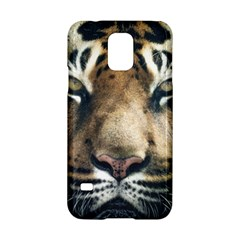 Tiger Bengal Stripes Eyes Close Samsung Galaxy S5 Hardshell Case