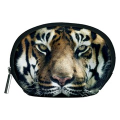 Tiger Bengal Stripes Eyes Close Accessory Pouches (medium)