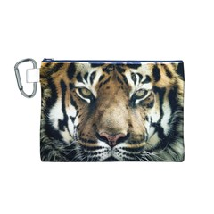 Tiger Bengal Stripes Eyes Close Canvas Cosmetic Bag (m)