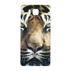 Tiger Bengal Stripes Eyes Close Samsung Galaxy Alpha Hardshell Back Case