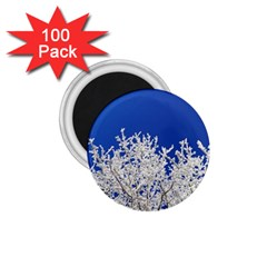Crown Aesthetic Branches Hoarfrost 1 75  Magnets (100 Pack)