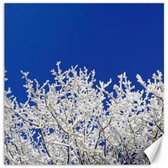 Crown Aesthetic Branches Hoarfrost Canvas 20  X 20