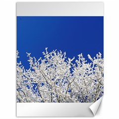 Crown Aesthetic Branches Hoarfrost Canvas 36  X 48