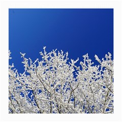 Crown Aesthetic Branches Hoarfrost Medium Glasses Cloth