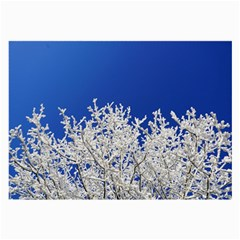 Crown Aesthetic Branches Hoarfrost Large Glasses Cloth