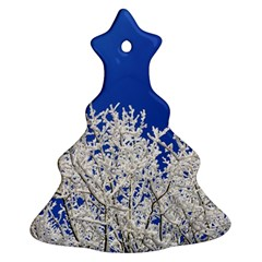 Crown Aesthetic Branches Hoarfrost Christmas Tree Ornament (two Sides)