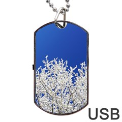 Crown Aesthetic Branches Hoarfrost Dog Tag Usb Flash (two Sides)