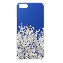 Crown Aesthetic Branches Hoarfrost Apple Iphone 5 Seamless Case (white)