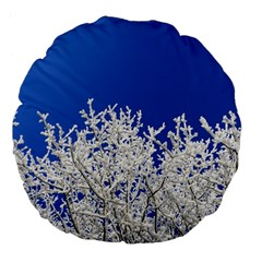 Crown Aesthetic Branches Hoarfrost Large 18  Premium Flano Round Cushions