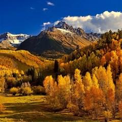 Colorado Fall Autumn Colorful Magic Photo Cubes