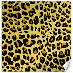 Animal Fur Skin Pattern Form Canvas 12  X 12